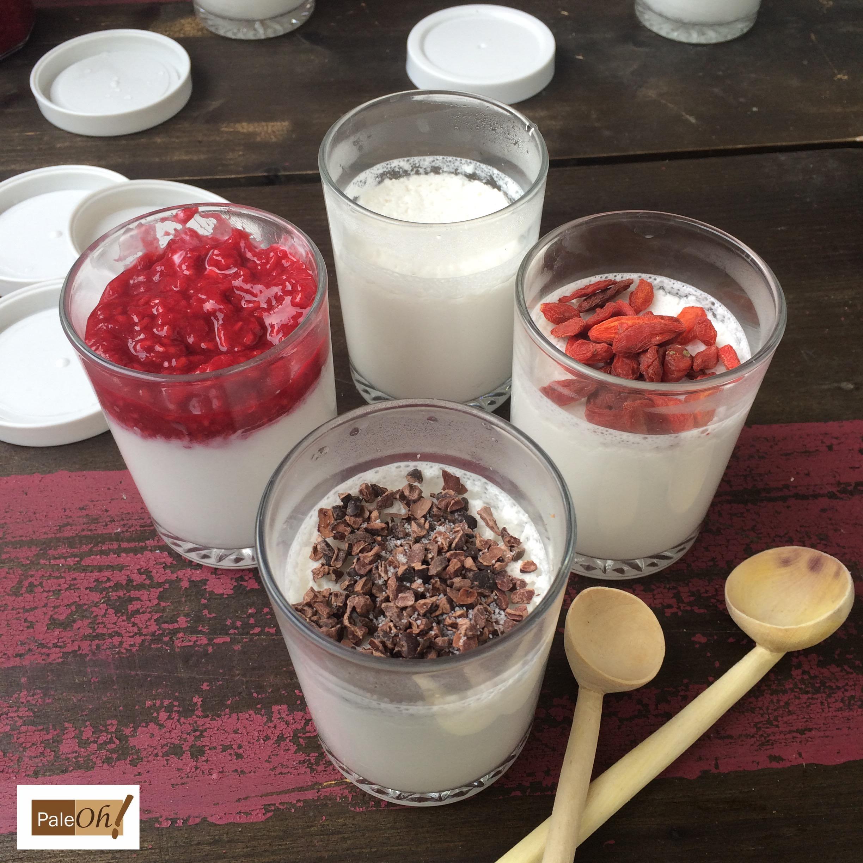 yaourts au lait de coco pal o aip vegan sans plv pal oh. Black Bedroom Furniture Sets. Home Design Ideas